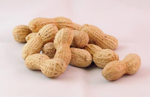 Fabelhaft Nüsse - online bestellen & kaufen | Lieferservice Fruchtknall @EO_68